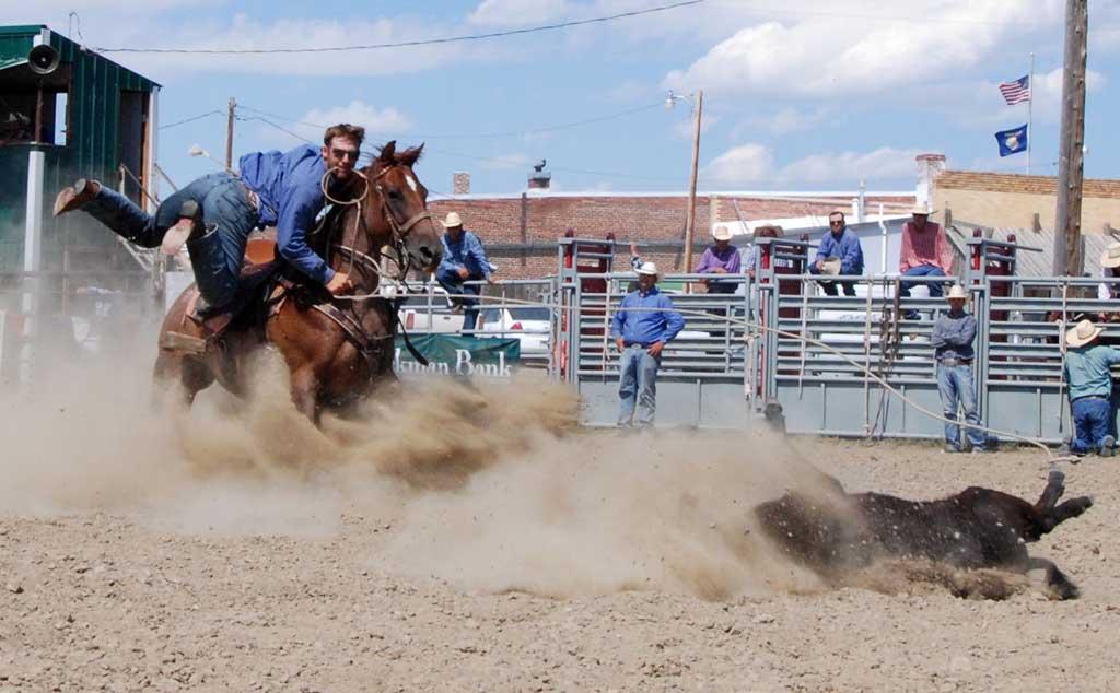 Ingomar-Open-Rodeo-2016-PHOTO-Calf-Roping-w