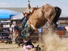 Ingomar-Open-Rodeo-2016-PHOTO-Dirt-for-lunch-w