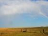 rainbow-ingomar