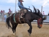 July 28 rodeo_Hairaising-w
