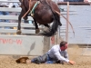 July 28 rodeo_Where did he go-w