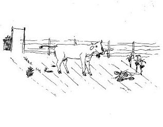Owen Badgett Drawing of Cow Enjoying Garden