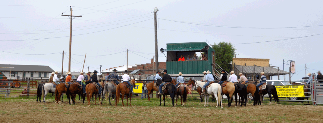 Rodeo participants waiting for instructions
