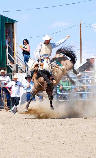 Bronc rider at the Ingomar rodeo