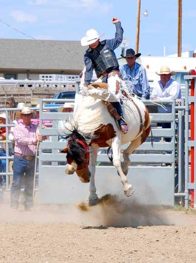 Bronc ride 2 Ingomar Montana